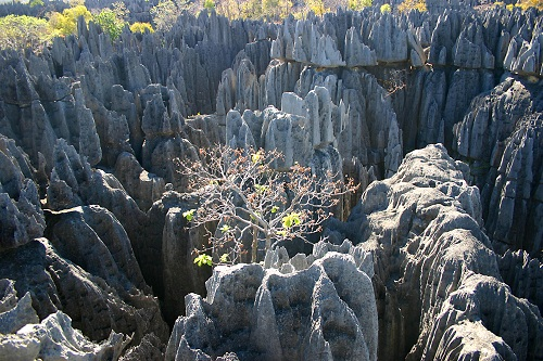Tsingy de Bemaraha | Blog Madasarent